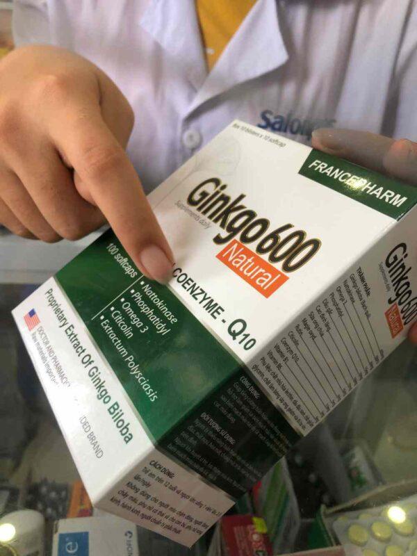 Ginko Biloba 600 mg from Vietnam