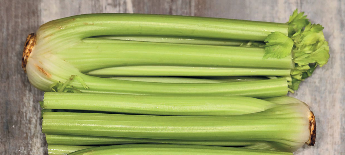 Some risks that can be encountered when using celery
