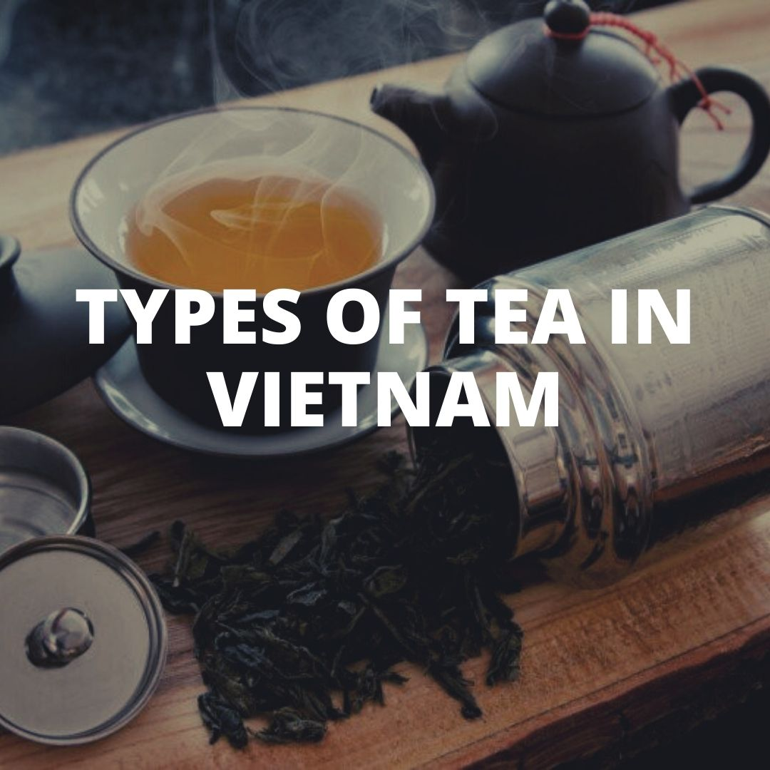 Types of tea in Vietnam Vietnamese blog Sixmd
