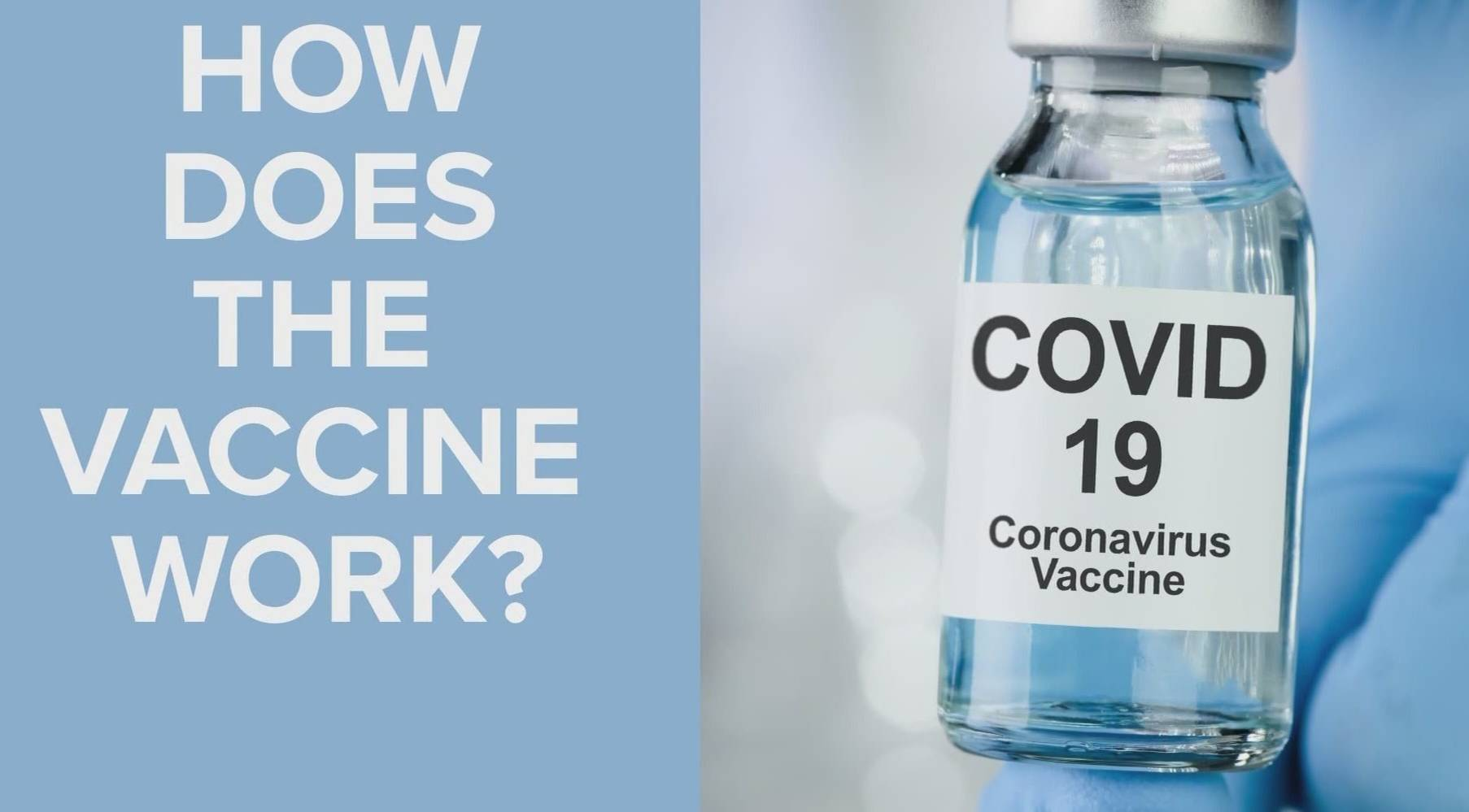 All information How does the Covid-19 vaccine work