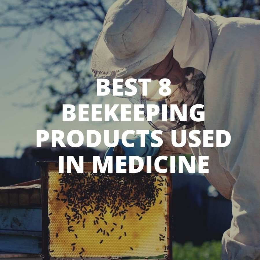 Top 8 beekeeping products used in medicine
