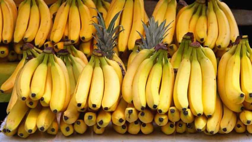 Favorite food Bananas