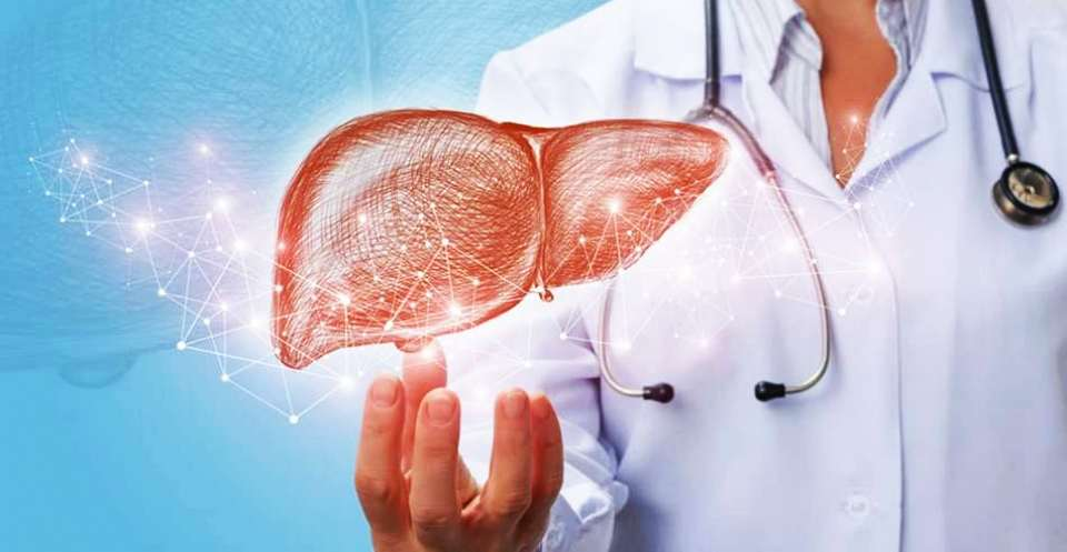 Best way How to protect liver