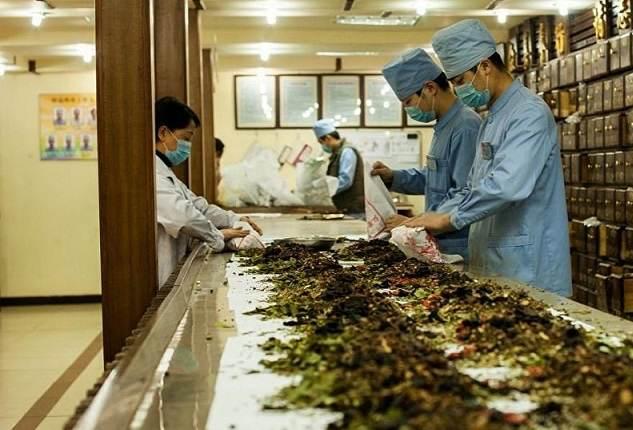 Traditional herbal medicine in Vietnam