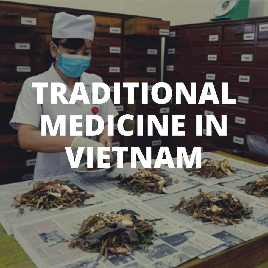 Herbal medicine in vietnam